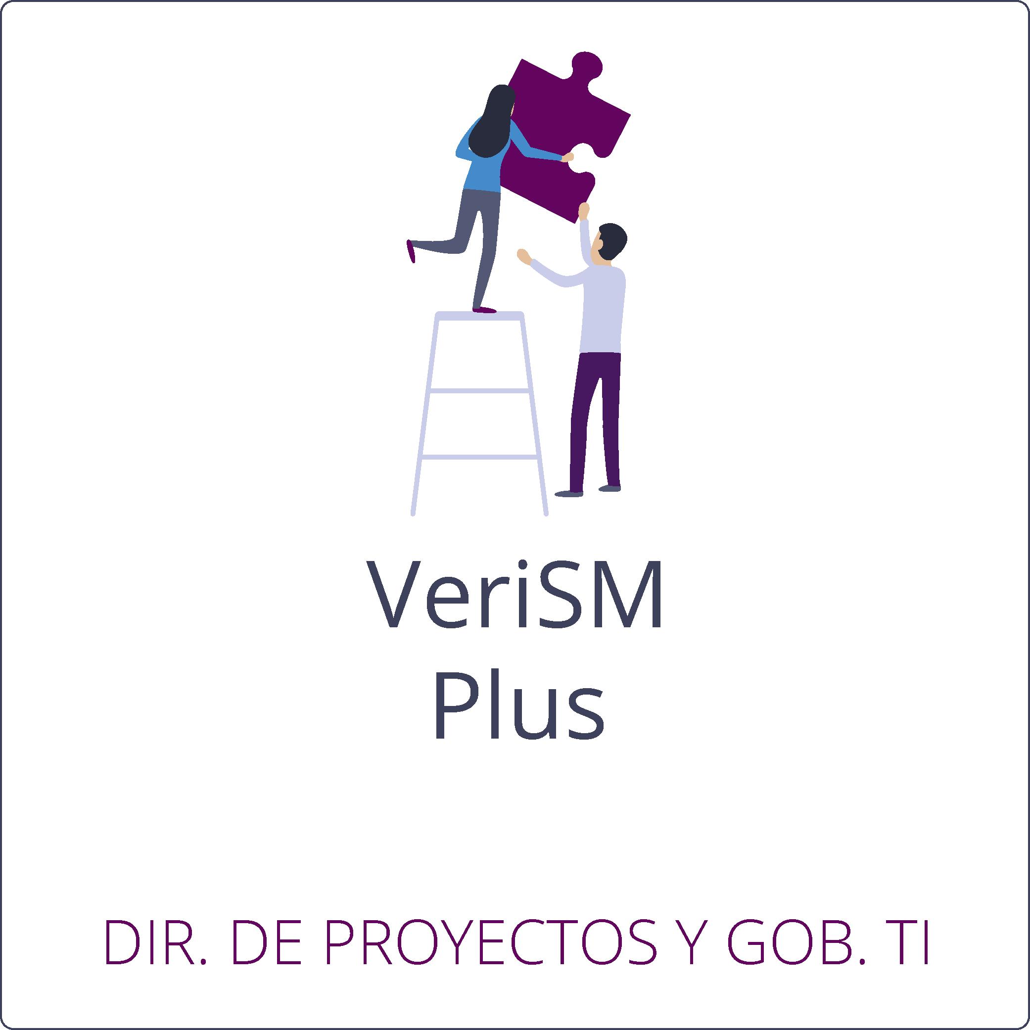 VeriSM Plus